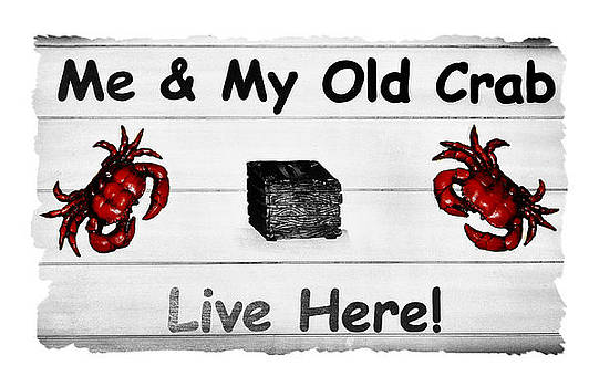 Karen M Scovill - My Old Crab