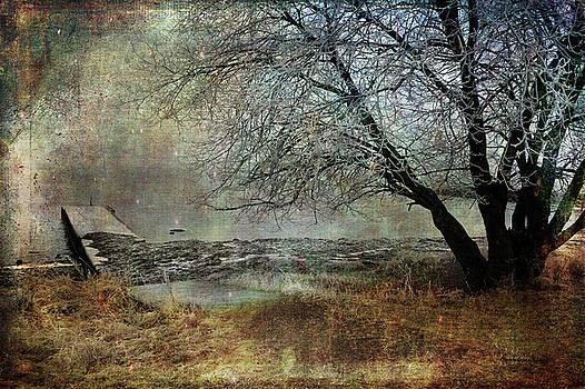 My Own World by Randi Grace Nilsberg