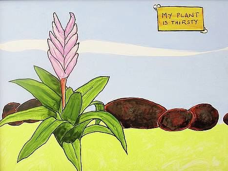 My Plant is Thirsty by Steve Kobb