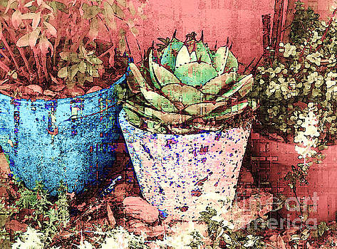 My Potted Friends			 by Ann Johndro-Collins