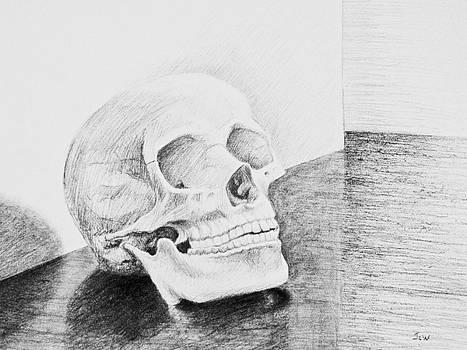 My Skull by Joe Winkler