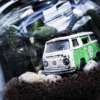 My Terrarium... The Car Was My by Ronit Jadhav
