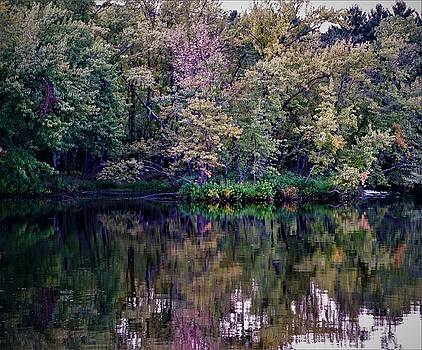 My Walden Pond by Jeff Murphy