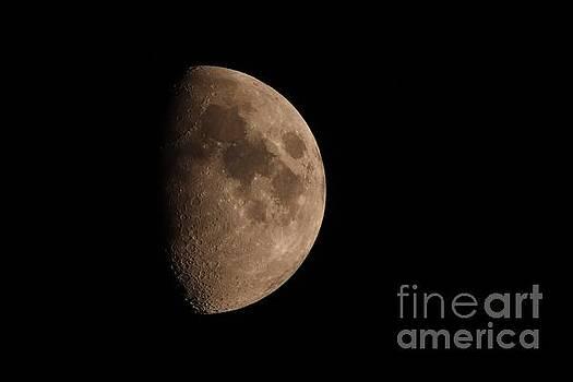 My Waxing Gibbous Moon by Tony Lee