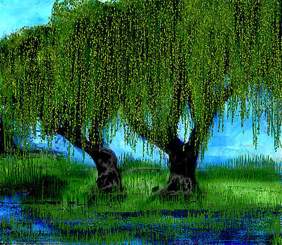 My Willows by Kathleen Storey