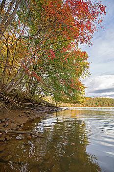Myers Creek Fall by Alan Raasch