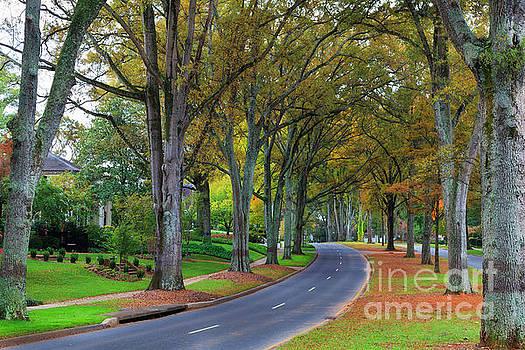 Jill Lang - Myers Park