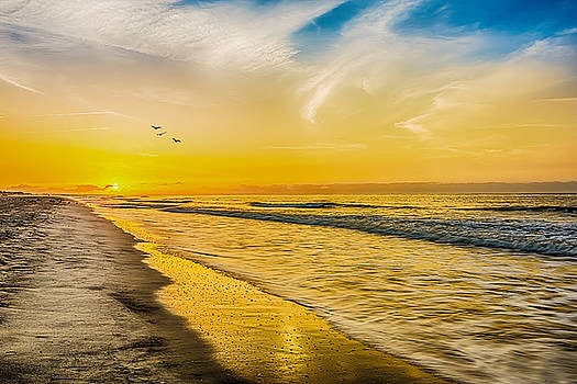 Myrtle Beach by Ahmed Shanab