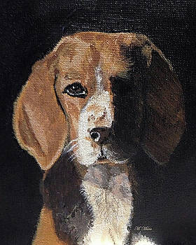 Mysterious Beagle by M Marie Art