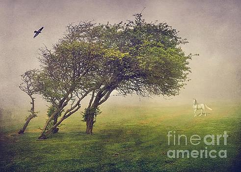 Svetlana Sewell - Mysterious Tree
