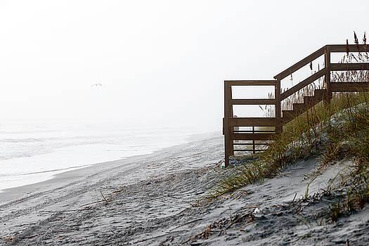 Mystery Beach by Anthony Baatz