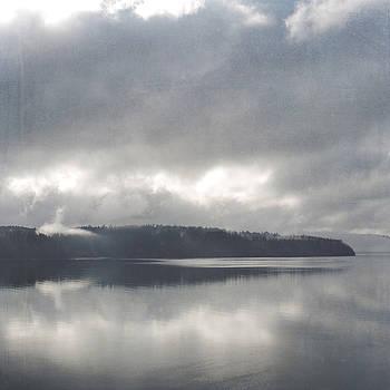 Mystery Island by Sally Banfill