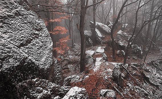 Jenny Rainbow - Mystery of Winter Rocks