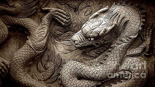 Mystical Ancient Dragon of China b/w by Ian Gledhill