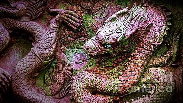 Mystical Ancient Dragon of China by Ian Gledhill