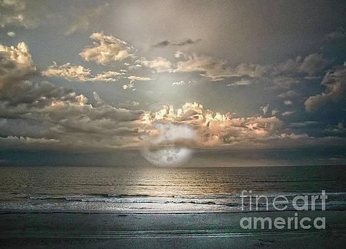 Mystical Moom by Judy Hall-Folde