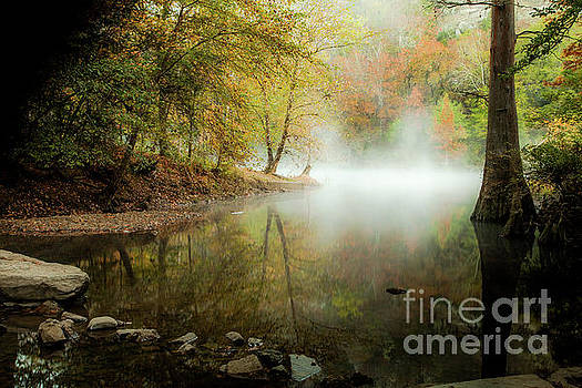 Mystical Reflection by Iris Greenwell