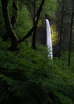 Larry Marshall - Mystical Waterfall 2