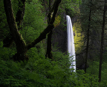 Larry Marshall - Mystical Waterfall