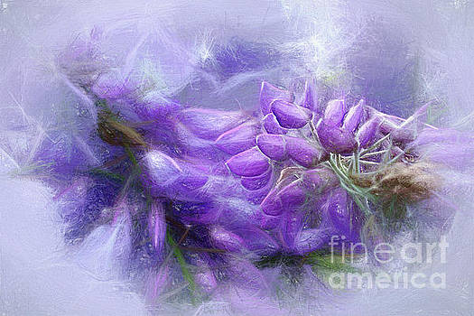 Mystical Wisteria by Kaye Menner by Kaye Menner
