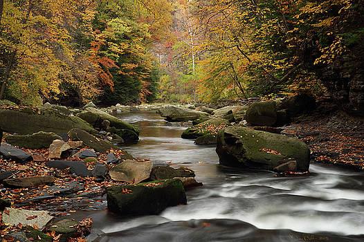 Mystique Waters by Daniel Behm