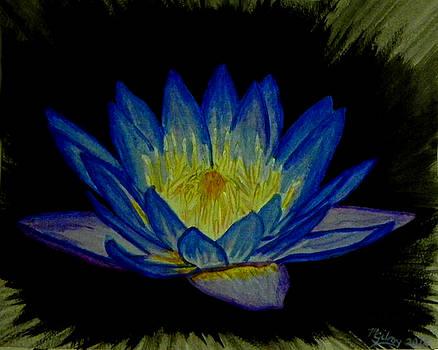Namaste by M Gilroy
