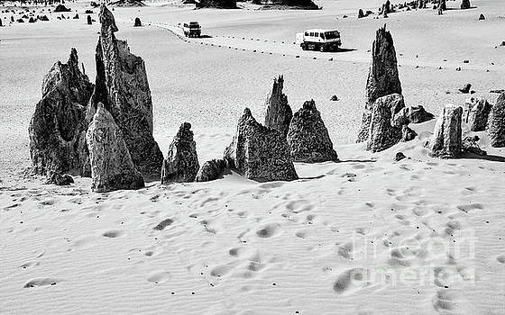 Tim Richards - Nambung Trekking BW