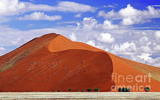 Namib desert, Namibia by Wibke W