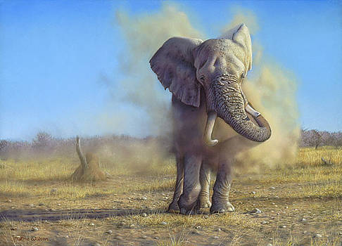 Namibian Elephant dusting by Eric Wilson