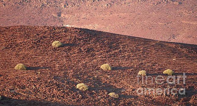 Namibian Landscape Sunset by Tom Wurl