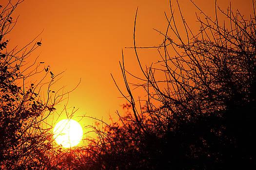 Namibian Sunset by Martin Wackenhut