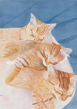 Nap time by Marcella Morse