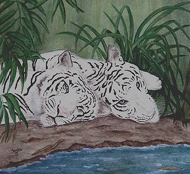 Nap Time by Sandra Maddox