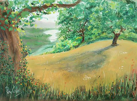 Napa Hillside by Ray Cole