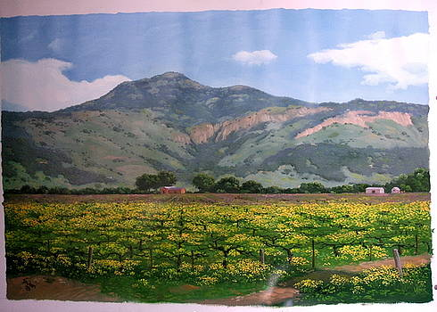 Napa Valley Atlas Peak in Spring by Padari