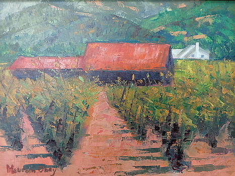 Napa Valley Vineyard by Maureen Obey