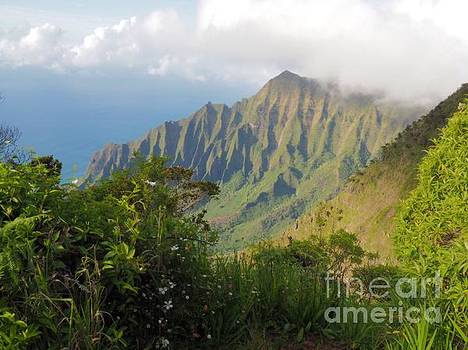 Napali coast by Larry Sobel