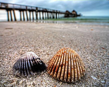 Toby McGuire - Naples Pier Seashells Naples FL Florida