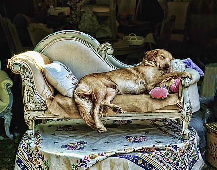 Edward Sobuta - Napping Dog Promo