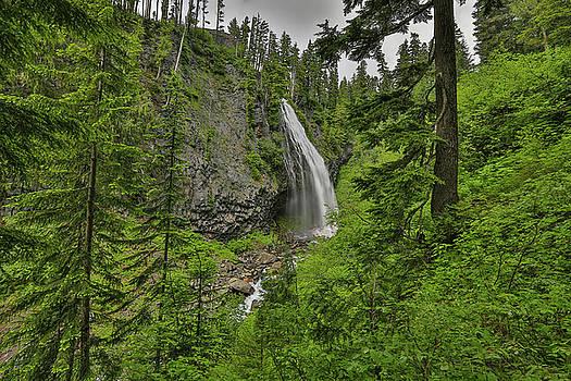 Narada Falls Mt. Rainier National Park by Sam Amato