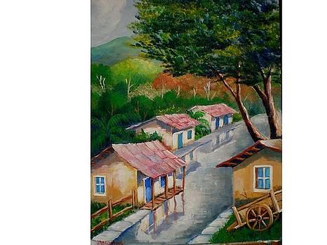 Naranjo road by Jean Pierre Bergoeing