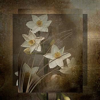 Marsha Tudor - Narcissus Containment