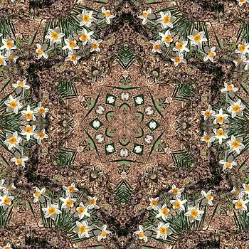 Valerie Kirkwood - Narcissus Kaleidoscope