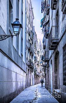 Svetlana Sewell - Narrow Alley