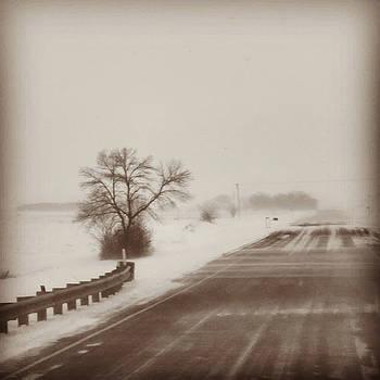 Narrow Crossing by Birdie Garcia