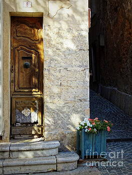 Narrow Door by Lainie Wrightson