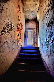 Emily Stauring - Narrow Escape
