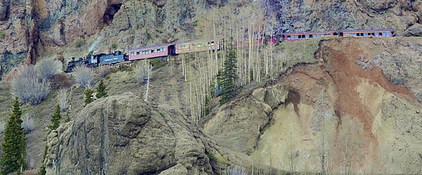 Narrow Gauge Railroad by Larry Bodinson