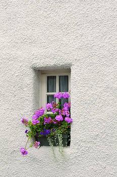 Jenny Rainbow - Narrow Window with Purple Geranium