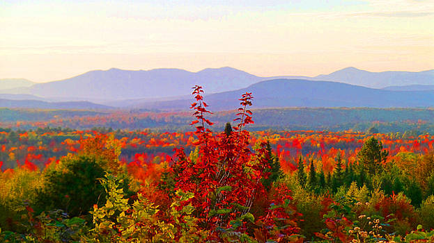 Mike Breau - National Scenic Byway